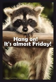 hang on its almost Friday quotes quote friday days of the week thursday thursday…