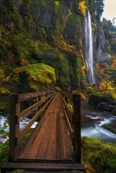 """Like a Bridge Over Troubled Waters - """" Like a bridge over troubled waters, I will ease your mind.""""  With all stress and anxiety that many have been feeling over the past couple of weeks or so I thought I would feature an image that takes us to to calmer place.  This image is from my recent trip to the Columbia Gorge and is of Mist Falls along the Wahclella Falls trail.  These falls normally do not have much of a flow, but in late October there were heavy rains in the Gorge making these falls…"""