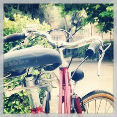 relaxed Selle Royal Ondina //// 253x214 mm Classic Fahrrad-Sattel //// Unisex
