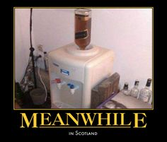 Meanwhile in Scotland