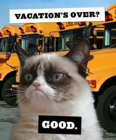 First day back to the grind? Share this Grumpy Cat ecard with friends to commiserate.