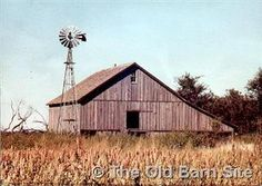 These are a few photographs of old barns taken by Daryl Miller. Daryl   is a painter and these were taken for studies and inspiration.