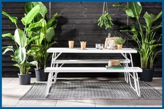 Urban Jungle Inspiratie : Karwei urban jungle karwei tuin pinterest gardens front