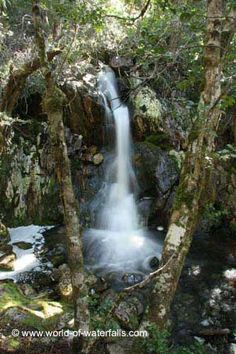 Crater Falls - World of Waterfalls Crater Lake, Tasmania, National Parks, Wildlife, Australia, Waterfalls, World, Mountain, Outdoor