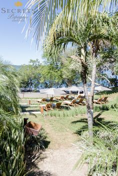 Set in the exuberant Arenilla beach, Secrets Papagayo Costa Rica will offer adults a stunning Unlimited-Luxury getaway in Costa Rica's Gulf of Papagayo. The secure community around Secrets Papagayo provides striking views of native flora and fauna and miles of unspoiled Pacific Coast beach.