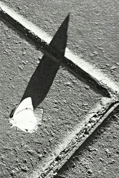 La sombra alargada