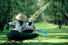 A wonderful Cruise to Mekong Delta! - http://go-vietnam.com/tourism-in-vietnam/places-to-visit-in-vietnam/places-to-visit-in-southern-vietnam/wonderful-cruise-mekong-delta/