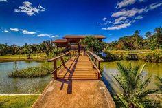 Botânico - Brasília / DF - Brasil ...... Jardim