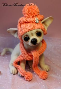 Needle felted Chihuahua dog by Tatiana Barakova.