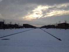 Landscape, Nootdorp