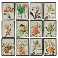 A lovely addition to your home gallery, this artful wall decor depicts a botanical design.  Product: Set of 12 wall decor
