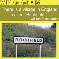 wtf fun fact | Tumblr