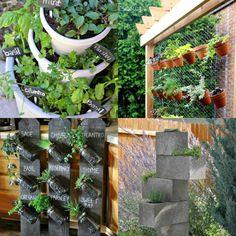 Os jardins em miniatura tem seu charme - tanto que inspiraram a pintora canadense Holly Farrell a escrever um livro sobre o assunto