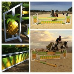Show jump equestrian pineapple CS Horse Jumps
