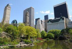 New York este una dintre pieţe cu cea mai mar prognoză de creştere. #shu#.