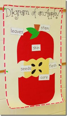 Save this one! It's a great idea for apples, plus a terrific literacy idea with bats. (plus a freebie!)