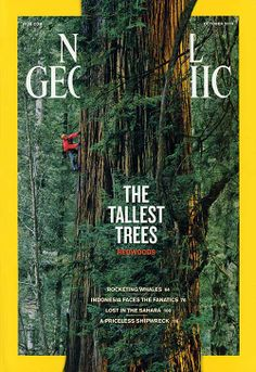 Ranging the redwood forests of California in National Geographic staff naturalist Pa. National Geographic Cover, National Geographic Photography, Editorial Layout, Editorial Design, Magazine Cover Design, Magazine Covers, Graphic Design, Illustration, Instagram