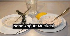 Nane yoğurt mucizesi | Bitkilog