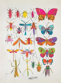 Princess-steppenwolf:by Andy Warhol. Pretty insects! #andywarhol #illustration #insects