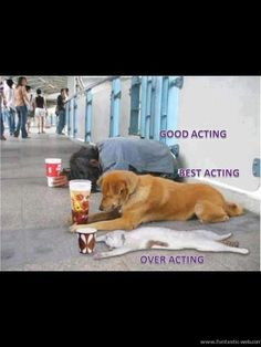 Difference between good, best and over acting