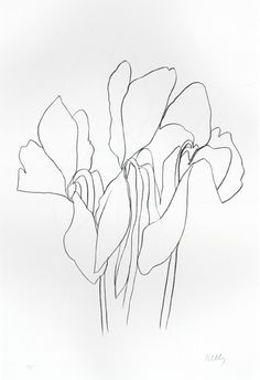 Ellsworth Kelly, Cyclamen V from Suite of Plant Lithographs Art And Illustration, Botanical Illustration, Illustrations, Ellsworth Kelly, Henri Matisse, Plant Drawing, Painting & Drawing, Matisse Drawing, No Rain