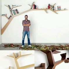 Libreria sull'albero