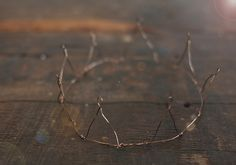 DIY Wire Crown - this reminds me of Where the Wild Things Are :)
