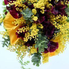 今日はミモザの日。女性に感謝の気持ちとしてみもざを贈るイタリアの風習だそうです。#mimosa #illony #paris #ashiya #tokyo #atsushitaniguchi #flowbulous #flower #bouquet