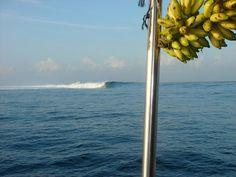 Mentawai Islands surf