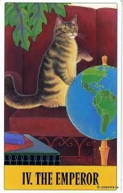 Resultado de imagen para jodorowsky tarot des chats