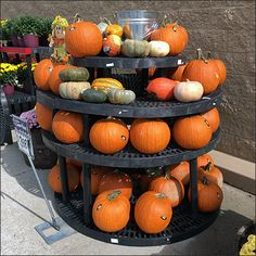 So okay, it may not spin, but Lazy Susan did immediately conjure a circular image in your mind, did it not. Tiered, stackable Plastic Dunnage Racks reach beyond the limits of their singular heights… Produce Displays, Store Displays, Yellow Spray Paint, Lazy Susan, Autumn Theme, Fall Pumpkins, The Conjuring, Visual Merchandising, Walmart