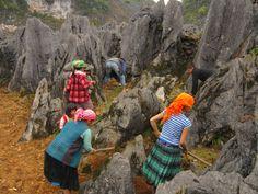 Ha Giang travel