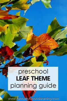 Preschool leaf theme planning guide with printable lesson plans, online activities, and more for teaching preschoolers about fall leaves and colors Preschool Teacher Tips, Fall Preschool Activities, Creative Activities For Kids, Preschool Lesson Plans, Preschool At Home, Preschool Science, Articulation Activities, Preschool Curriculum, Teaching Activities