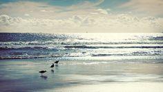the beach lomo #AmericanApparel #PinaTripwithAA