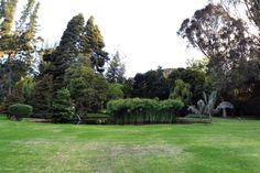 Lago – Hacienda el Salitre
