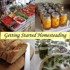 Getting Started Homesteading - Articles for Beginners Featuring Homesteading Bas. - homesteading and living off the grid - Best Garden Ideas Homestead Living, Farms Living, Homestead Farm, Homestead Homes, Homestead Layout, Food Storage, Do It Yourself Food, Urban Homesteading, Homesteading Blogs