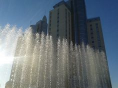 Drago Towers Jesolo