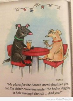 Ha ha ha but seriously though, dogs should NOT be drinking martinis & Miller Light