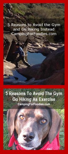5 Reasons To Avoid The Gym – Go Hiking As Exercise Instead! 5 Reasons Hiking As…