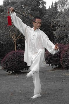 Chinese martial art 2012 Tai Chi Master Liu Yang | radicalpit@monsterpix.de