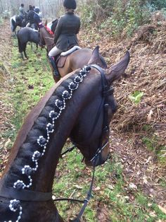 A little bling in the braid