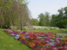 Parc Floral au Bois de Vincennes, Paris