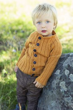 Ravelry: trivelig's Little guy's honey jacket