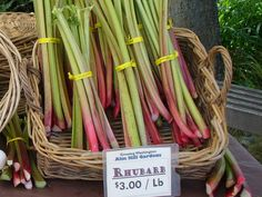 If you pass up green rhubarb at the farmers market, think again. Color has nothing at all to do with the flavor of rhubarb. Taste depends on the rhubarb variety, not whether the rhubarb stalks (or petioles) are green, pink, crimson red, or even speckled with two colors.