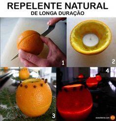 repelente com casca de laranja, ideias alternativas