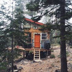 Source IG @throughthepinesco #cabin #mountainlife #woods #snow / The Green Life <3