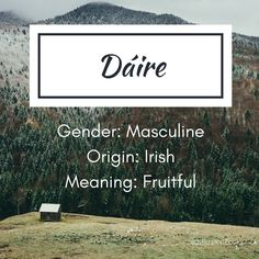 Baby Name Generator - Dáire boy's name - Writing Words, Writing A Book, Writing Prompts, Writing Tips, Creative Writing, Character Prompts, Writing Characters, Character Names, Name Inspiration