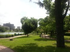 parco centrale del lago.jpg (1024×768)