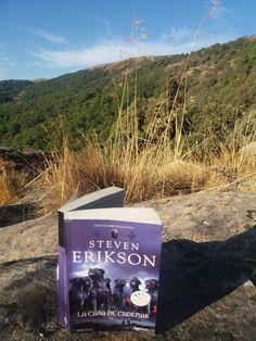 El libro en la sombra II.