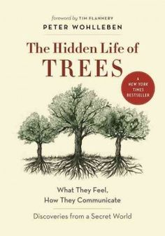 A forester's fascinating stories, supported by the latest scientific research, reveal the extraordinary world of forests and illustrate how trees communicate and care for each other